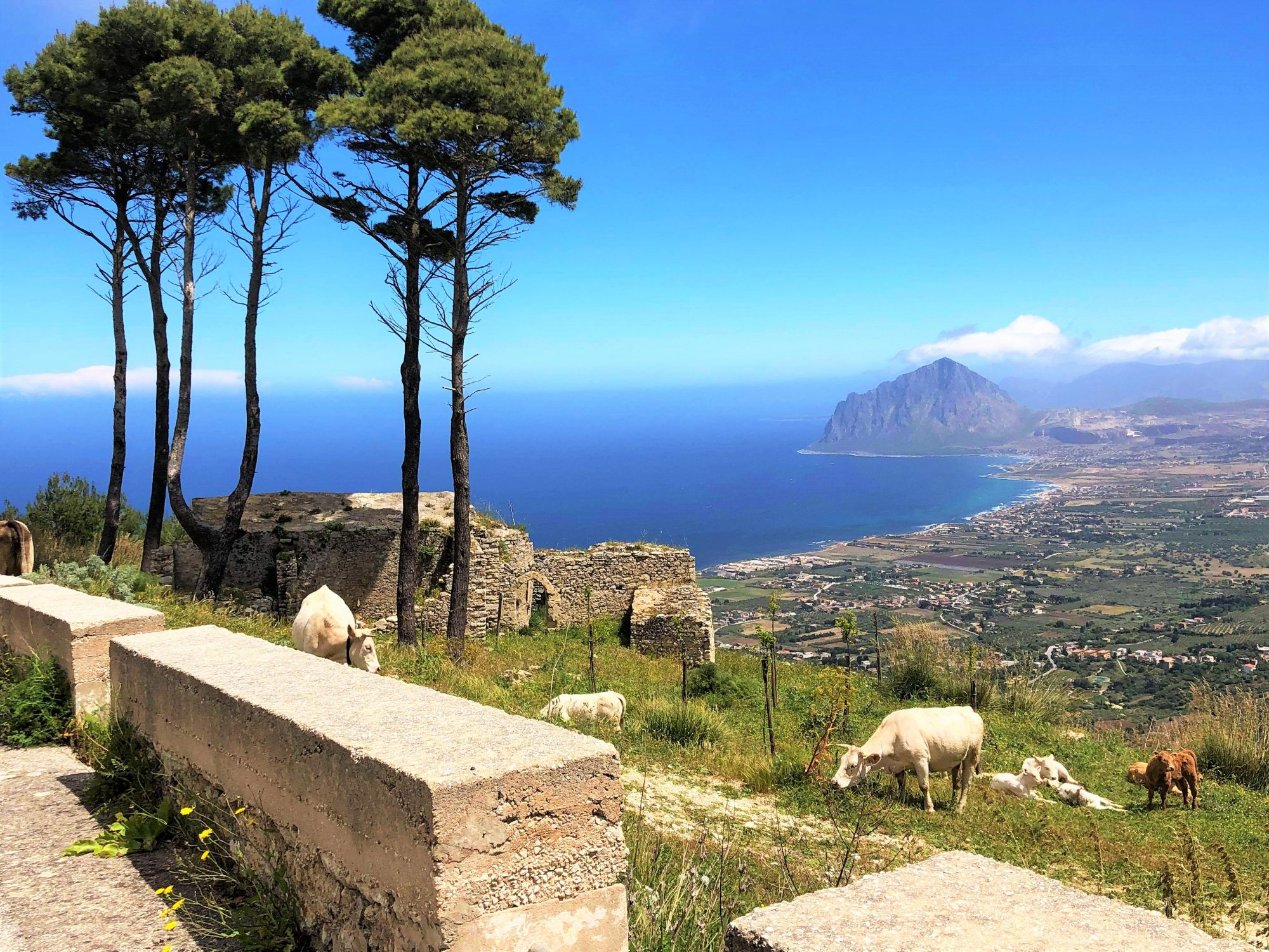 Von Trapani bis Palermo… Ein kurztrip im Westen Siziliens